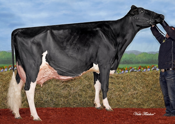 Smithden Mr Burns Emma EX-94-1*